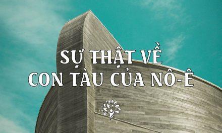 Sự thật về Con Tàu của Nô-ê